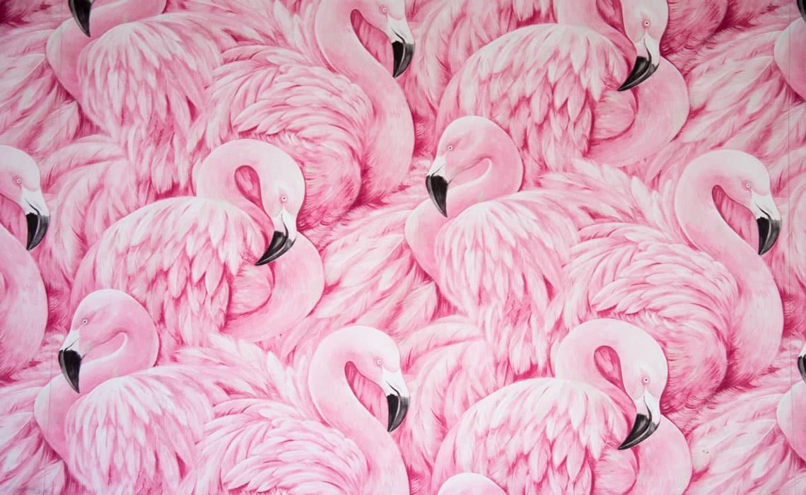 Paljon piirrettyjä vaaleanpunaisia flamingoja vierekkäin.