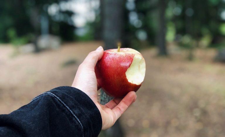 Kädessä puraistu omena metsäisellä taustalla.